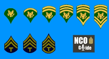 Short History of the Specialist Rank